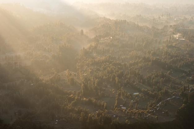 Acima da luz do sol na floresta tropical com nevoeiro na manhã Foto Premium