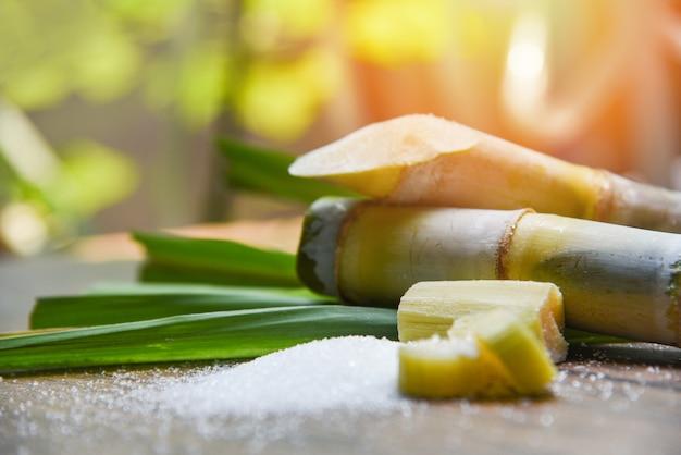 Açúcar e cana de açúcar na mesa de madeira e natureza Foto Premium