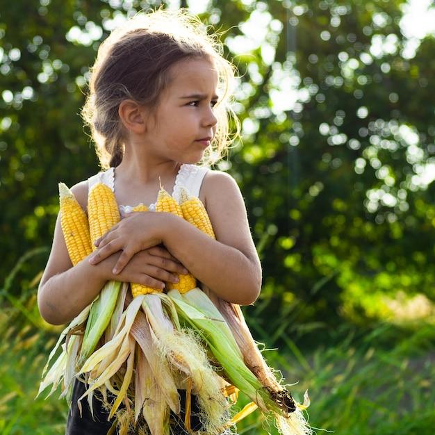 Adorável menina brincando em um campo de milho em um lindo dia de outono. criança bonita segurando uma espiga de milho. colher com crianças. atividades de outono para crianças. Foto Premium