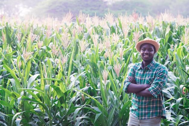 Agricultor africano com chapéu ficar no campo de plantação de milho Foto Premium