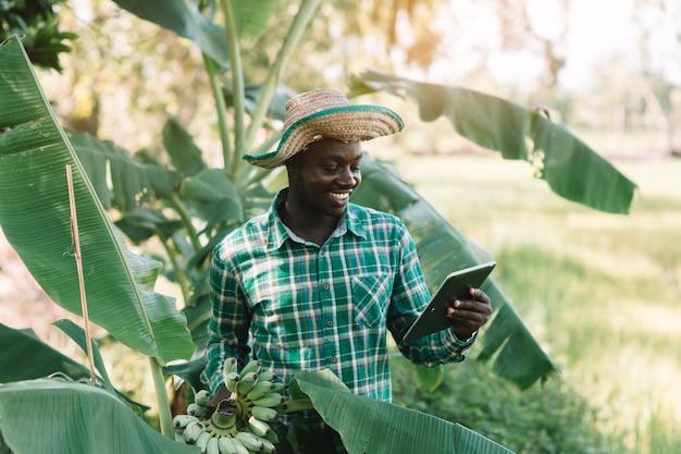 Agricultor africano segurando banana e olhando tablet na fazenda orgânica Foto Premium