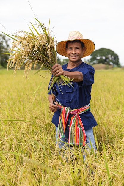 Agricultor asiático Foto Premium