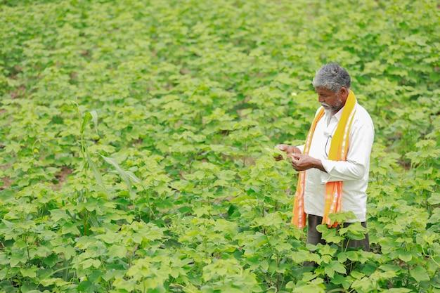 Agricultor indiano no campo de algodão, índia Foto Premium