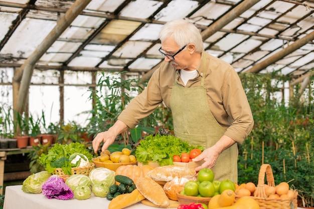 Agricultor sênior de cabelo branco e avental, arrumando os legumes no balcão enquanto os prepara para venda no mercado do agricultor Foto Premium