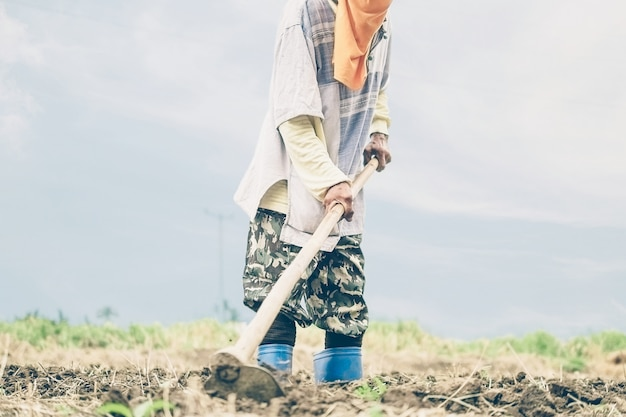 Agricultor tailandês está cavando sua terra agrícola Foto gratuita