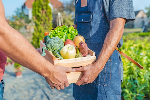 Agricultor vendendo seus produtos orgânicos em um dia ensolarado Foto Premium