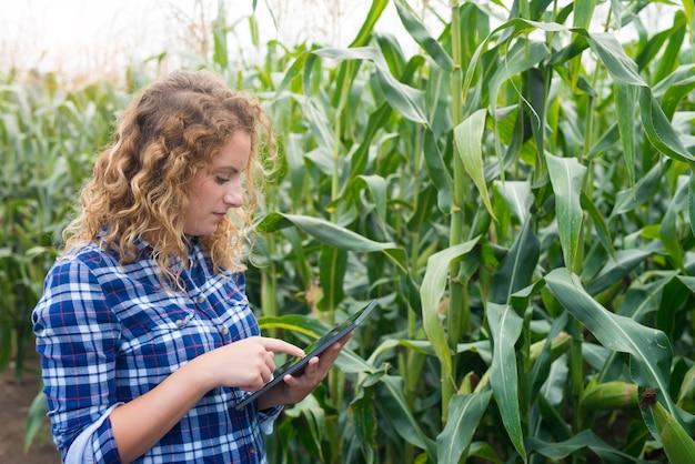 Agricultora com tablet em pé no campo de milho, usando a internet e enviando um relatório Foto gratuita