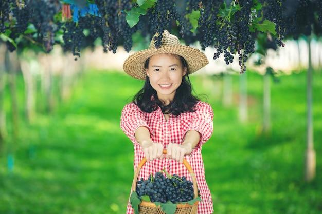 Agricultores de vinhedos que sorriem e apreciam a colheita. Foto gratuita