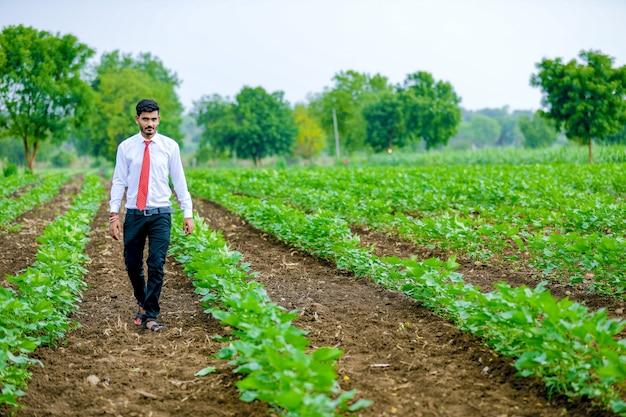 Agrônomo com agricultor no campo de algodão Foto Premium
