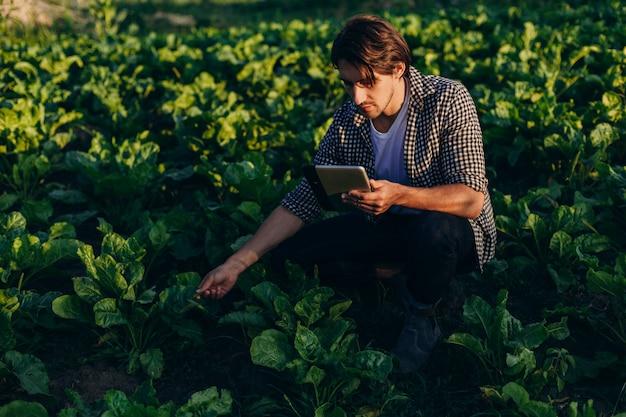 Agrônomo em um campo assumindo o controle do rendimento com ipad e considerando uma planta Foto Premium