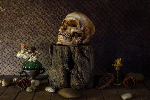 Ainda vida com um crânio. Foto Premium