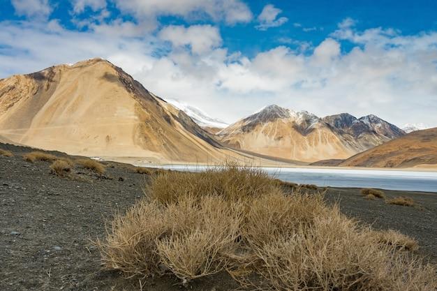 Ajardine a imagem do lago pangong e do fundo do mountain view em ladakh, índia. Foto Premium