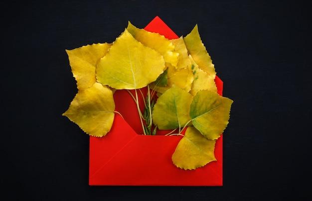 Álamo outono folhas em envelope vermelho Foto Premium