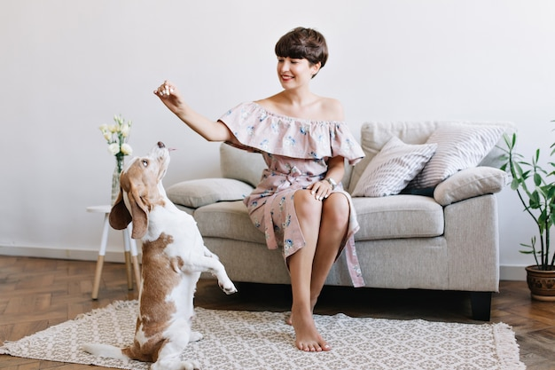 O que é enriquecimento ambiental para cães e como fazer na sua casa