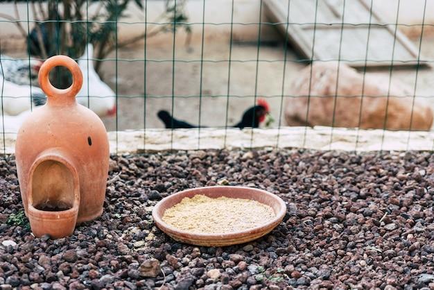 Alimentador de galinhas em uma fazenda. Foto Premium
