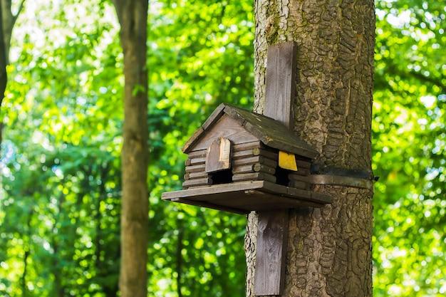 Alimentador de pássaros de madeira em um fundo de árvores verdes Foto Premium