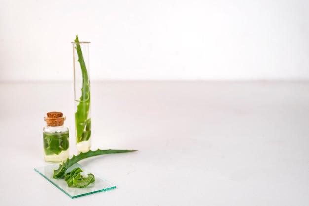 Aloe vera, óleo, em, garrafa vidro, com, cortado, de, aloe vera, gel Foto Premium