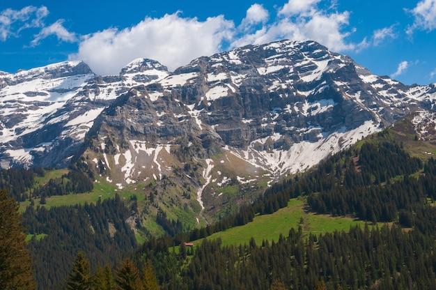 Alpes suíços de tirar o fôlego com árvores verdes e topos de montanhas cobertas de neve Foto gratuita