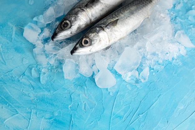 Alto ângulo de par de peixes com gelo Foto gratuita