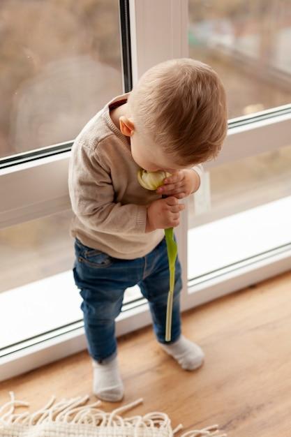 Alto, ângulo, menino bebê, cheirando flor Foto gratuita
