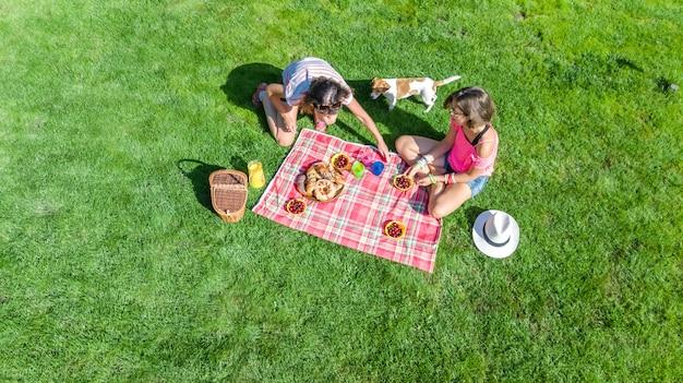Amigas com cachorro fazendo piquenique no parque, meninas sentadas na grama e comer refeições saudáveis ao ar livre, vista aérea de cima Foto Premium
