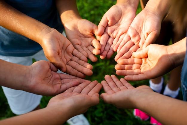 Amigos de alto ângulo, mostrando as mãos para a câmera Foto gratuita