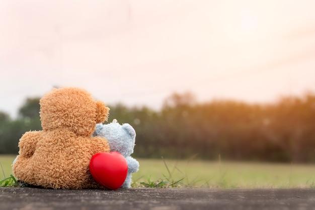 Amor para o dia dos namorados: casal ursos sente-se no chão um olhar em frente juntamente com amor Foto Premium