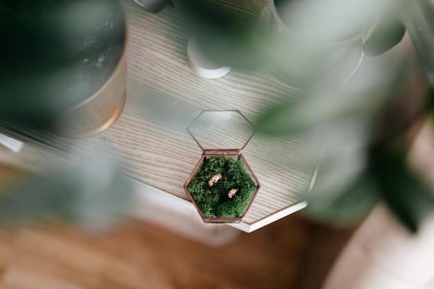 Anéis de casamento beatuful Foto gratuita