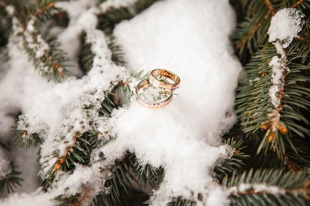 Anéis de casamento fechem na neve Foto gratuita