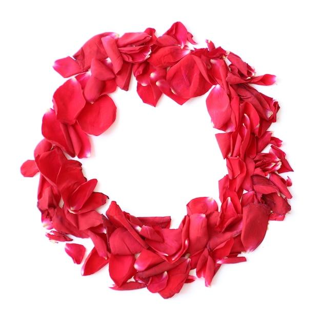 Anel de grinalda de pétalas de rosa vermelha em fundo branco para aniversário, aniversário Foto gratuita
