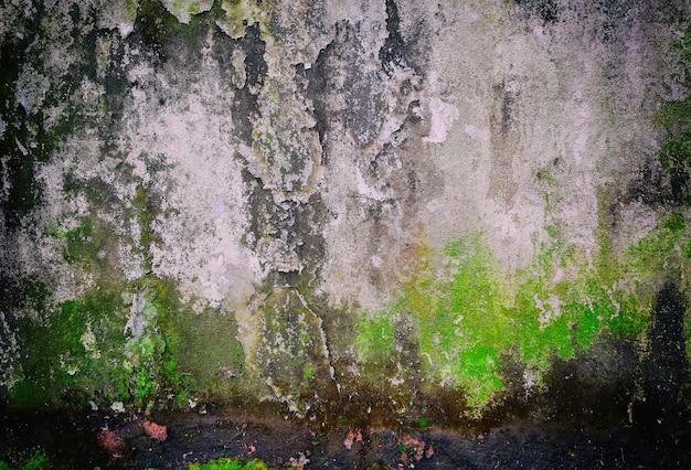 Antigas, grunge, fundo, textura, de, antigas, parede concreta Foto Premium