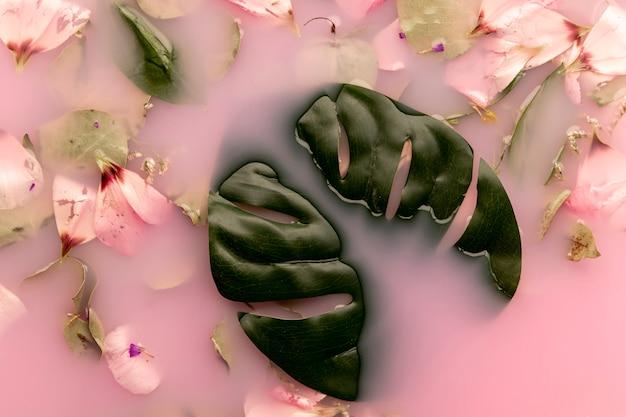 Apartamento colocar pétalas de rosa e folhas na água cor-de-rosa Foto gratuita