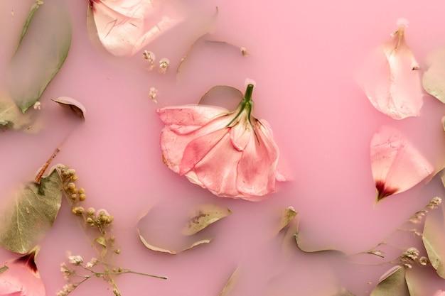 Apartamento colocar rosas cor de rosa na água cor-de-rosa Foto gratuita