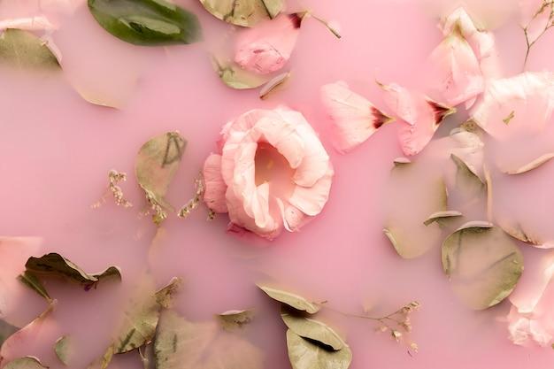Apartamento colocar rosas cor de rosa na água rosa Foto gratuita