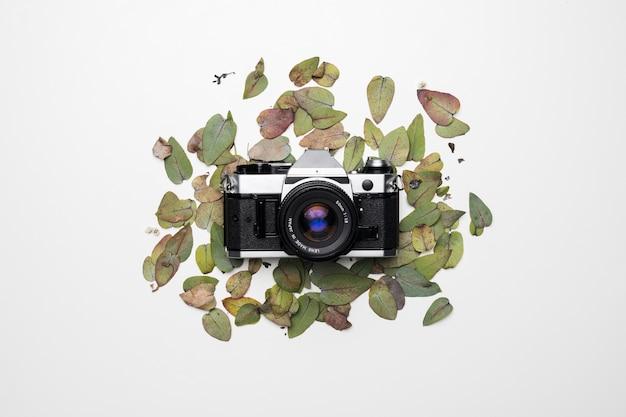 Apartamento leigos de câmera nas folhas Foto gratuita