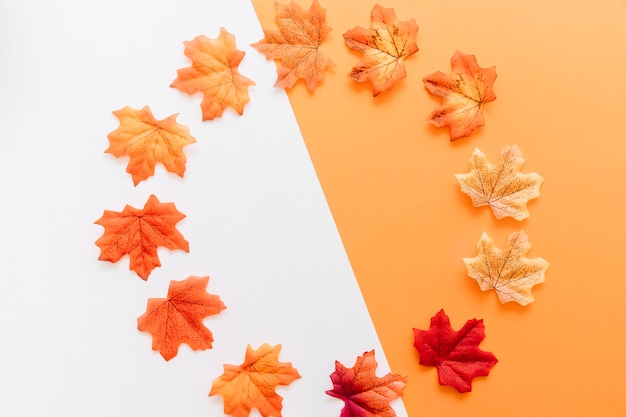 Apartamento leigos de folhas de outono colocadas em torno do limite Foto gratuita