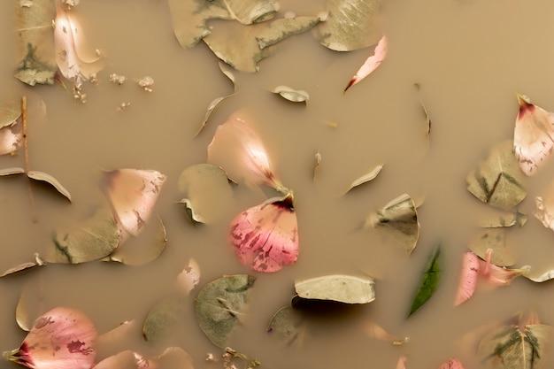 Apartamento leigos pétalas de rosa e folhas na água marrom Foto gratuita