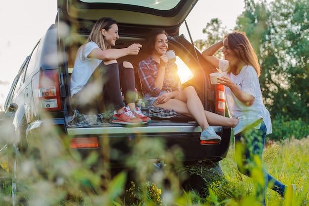 Apreciando o resto e socializando em uma viagem de piquenique com seus melhores amigos. Foto Premium