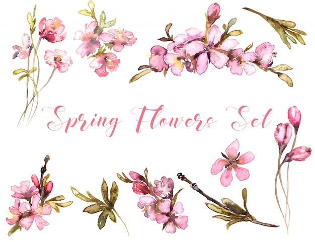 Aquarela de flores de primavera. concurso blush Foto Premium