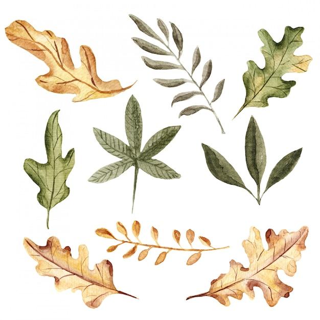 Aquarela de outono folhas coleção Foto Premium