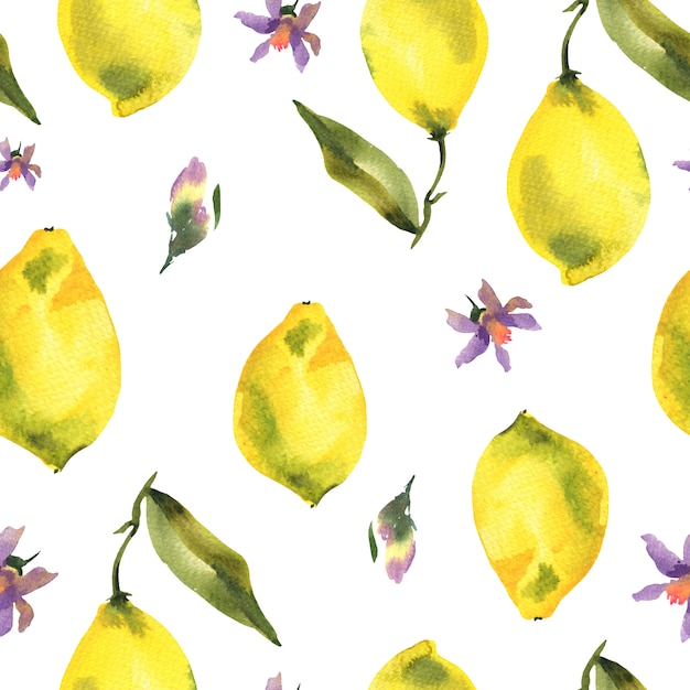 Aquarela sem costura padrão com ramo de limão cítrico Foto Premium