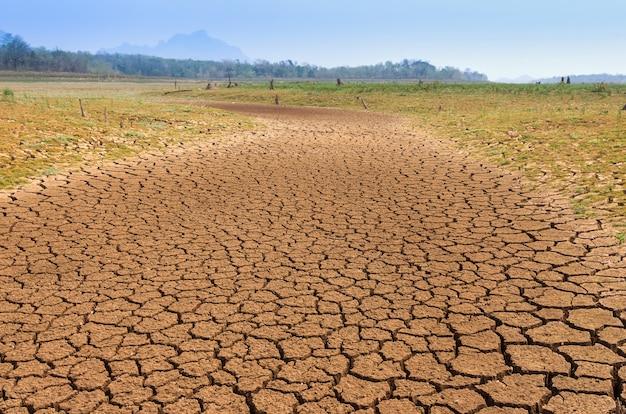 Aquecimento global, seca. Foto Premium