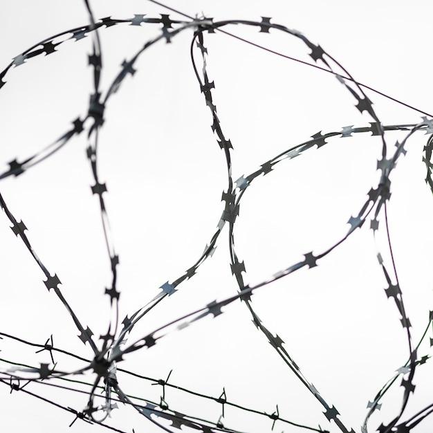 Arame farpado na fronteira do país. barbwire na cerca para proibir a passagem ilegal de estrangeiros. Foto Premium