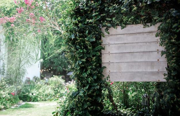 Arco de planta de madeira ivy verde planta para jardim Foto Premium