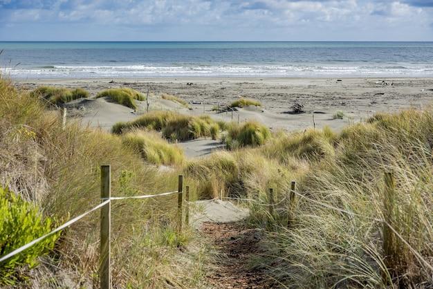 Área de caminhada em frente à praia de waikawa, na nova zelândia Foto gratuita
