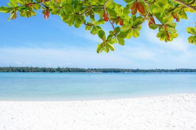 Areia branca com o mar azul para o conceito de verão Foto Premium