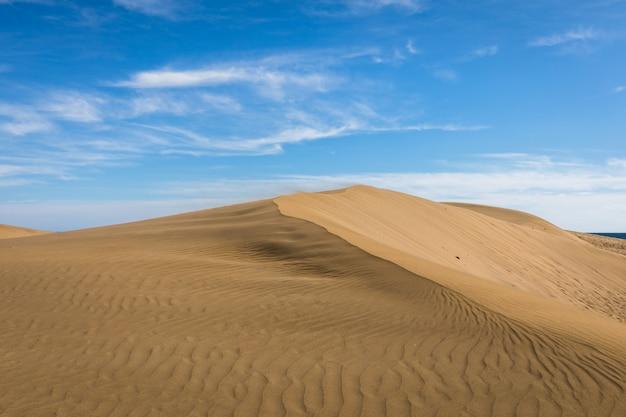 Areia nas dunas de maspalomas, um pequeno deserto em gran canaria, espanha. areia ao vento no topo da colina. Foto Premium
