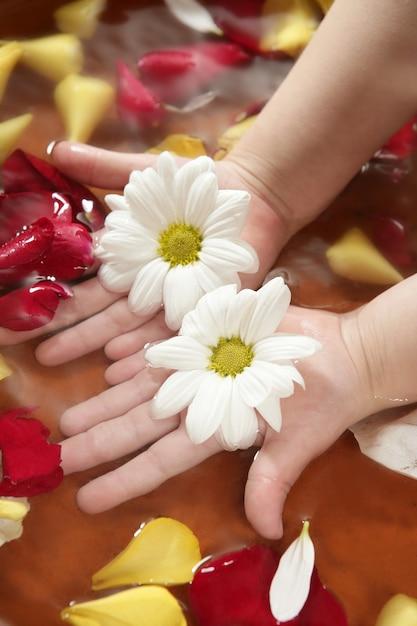 Aromaterapia, flores banho de mão, pétala de rosa Foto Premium