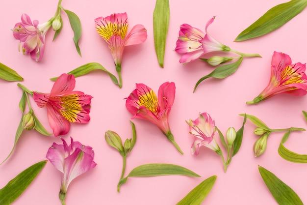 Arranjo de alstroemeria rosa leigo plana Foto gratuita