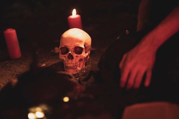 Arranjo de bruxaria com caveira e velas Foto gratuita